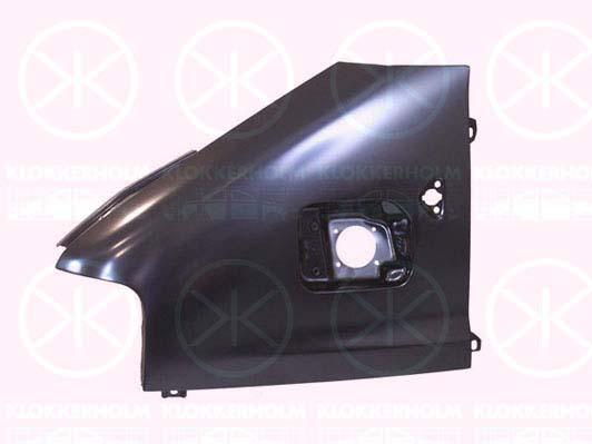 Citroen/Fiat/Peugeot etulokasuoja vasen | konepellit - lokasuojat - etukehät | laatu koriosat edullisesti ja nopeasti Suomalaisesta Carkone verkkokaupasta